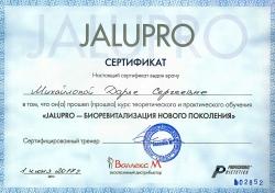 Михайлова Дарья Сергеевна - Сертификат